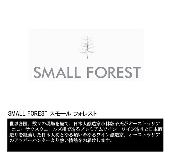 SMALL FOREST スモール フォレスト