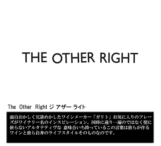 The  Other  Right ジ アザー ライト